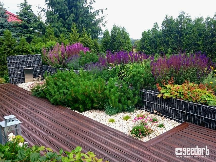 Seedart_ogród z gabionami_projekt nawierchni tarasowej_projektowanie ogrodów Toruń Bydgoszcz